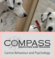 Dbca 犬の行動心理カウンセリング協会 トップページ